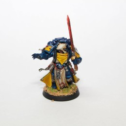 Imperial Fist Librarian