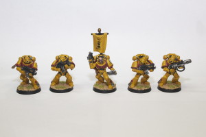 Imperial Fist Tactical Marines