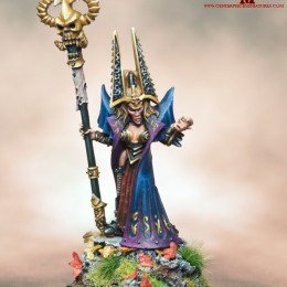 The Dark Elf Sorceress Painted to Display Standard