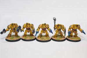 Imperial Fist Terminators