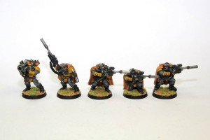 Imperial Fist Scouts with Desert Camo