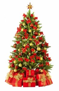beautiful_christmas_tree_3_hd_pictures_170699
