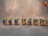 Warhammer 30k Imperial fist